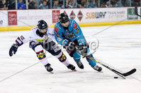 Press Eye - Belfast -  Northern Ireland -16th November 2019 - Photo by Darren Kidd/Presseye . Belfast Giants\' Brian Ward with Dundee Stars during Saturday nights Elite Ice Hockey League game at the SSE Arena, Belfast.    Photo by Darren Kidd/Presseye