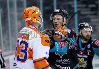 Press Eye - Belfast -  Northern Ireland - 06th January 2019 - Photo by William Cherry/Presseye. Belfast Giants\' Dustin Johner with Sheffield Steelers\' Aaron Johnson during Sunday afternoons Elite Ice Hockey League game at the SSE Arena, Belfast.    Photo by William Cherry/Presseye