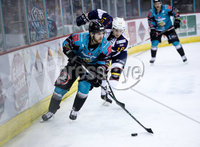 Press Eye - Belfast -  Northern Ireland - 03rd February 2019 - Photo by William Cherry/Presseye. Belfast Giants\' Lewis Hook with Guildford Flames\' Brett Ferguson during Friday nights Elite Ice Hockey League game at the SSE Arena, Belfast.   Photo by William Cherry/Presseye
