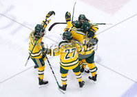 Press Eye - Belfast -  Northern Ireland - 05th January 2019 - Photo by William Cherry/Presseye. Clarkson University\'s Kelly Mariani celebrates scoring against Northeastern University during Saturdays inaugural Womens Friendship Series game at the SSE Arena, Belfast.   Photo by William Cherry/Presseye