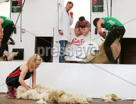 Press Eye - Belfast - Northern Ireland - 15th May 2019. First day of the Balmoral Show, in partnership with Ulster Bank.  The Sheep shearing competition takes place at Balmoral Park outside Lisburn. . Picture by Jonathan Porter/PressEye. .