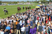 Press Eye - Belfast - Northern Ireland - 7th May 2018  - . May Day Meeting at Down Royal Racecourse.. DAILY MIRROR BEGINNERS CHASE. General view of the 4th race.. Photo by Kelvin Boyes / Press Eye .