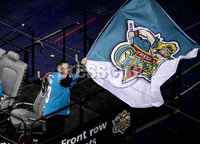 Press Eye - Belfast, Northern Ireland - 06th December 2019 - Photo by William Cherry/Presseye. A Belfast Giants fan celebrates Ben Lake\'s goal during Friday nights Elite Ice Hockey League game against Sheffield Steelers at the SSE Arena, Belfast.       Photo by William Cherry/Presseye