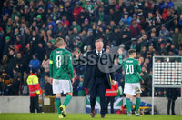 Press Eye - Belfast - Northern Ireland - 16th November 2019. UEFA EURO 2020 Qualifier Group C.  Northern Ireland Vs Netherlands at the National Stadium at Windsor Park, Belfast. . Northern Ireland manager Michael ONeill, who has managed his last home game at Windsor Park, pictured with team captain Steven Davis after the game finished 0-0.. . Picture by Jonathan Porter/PressEye
