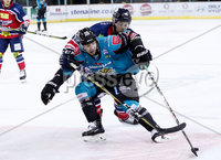 Press Eye - Belfast -  Northern Ireland - 14th September 2018 - Photo by William Cherry/Presseye. Belfast Giants\' Patrick Dwyer with Dundee Stars\' Connor Cox during Friday nights Challenge Cup game at the SSE Arena, Belfast.       Photo by William Cherry/Presseye