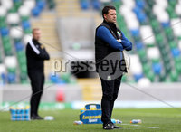 Press Eye - Belfast -  Northern Ireland - 12th August 2017 - Photo by William Cherry/Presseye. Linfield manager David Healy during Saturdays Danske Bank Premiership game against Carrick at the National Stadium at Windsor Park, Belfast.