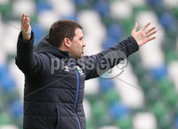 Danske Bank Premiership Play-off , Windsor Park, Belfast  7/4/2018. Linfield FC vs Ballymena United. Linfield\'s manager David Healy against  Ballymena United.. Mandatory Credit @INPHO/Brian Little