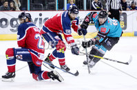 Press Eye - Belfast -  Northern Ireland - 14th September 2018 - Photo by William Cherry/Presseye. Belfast Giants\' Darcy Murphy with Dundee Stars\' during Friday nights Challenge Cup game at the SSE Arena, Belfast.       Photo by William Cherry/Presseye