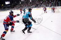 Press Eye - Belfast -  Northern Ireland - 14th September 2018 - Photo by William Cherry/Presseye. Belfast Giants\' Francis Beauvillier with Dundee Stars\' Petr Chaloupka during Friday nights Challenge Cup game at the SSE Arena, Belfast.       Photo by William Cherry/Presseye