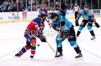 Press Eye - Belfast -  Northern Ireland - 14th September 2018 - Photo by William Cherry/Presseye. Belfast Giants\' David Rutherford with Dundee Stars\' Drydn Dow during Friday nights Challenge Cup game at the SSE Arena, Belfast.       Photo by William Cherry/Presseye