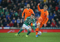 PressEye-Northern Ireland- 16th November 2019-Picture by Brian Little/PressEye. Northern Ireland Steven Davis   and Netherlands Frenkie de Jong  during Saturday\'s EURO 2020 Qualifier at the National Football Stadium at Windsor Park.. Picture by Brian Little/PressEye